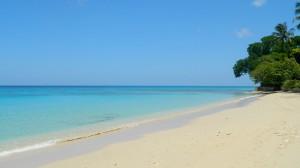 Gibbs Beach Barbados