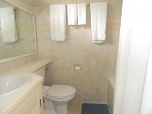 Bushy Park 642 Barbados rental bathroom
