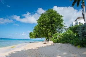Chanel 5 Barbados villa beach