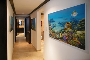Coral-Cove-3-Green-Flash-Barbados-