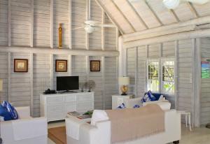 Dudley Wood villa rental Barbados TV