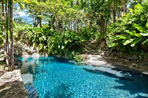 Fustic-house-Barbados-villa-pool