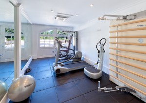 High Cane villa gym