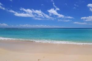 Leith Court Barbados beach