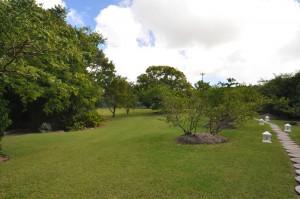 San Flamingo villa garden