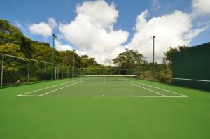 San Flamingo villa tennis court