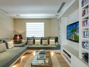 The Dream villa media room