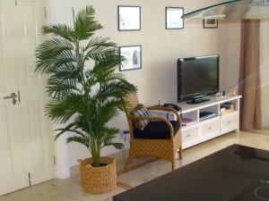 Waterside 405 Barbados TV