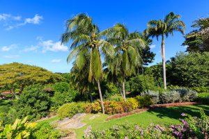 aurora-villa-rental-barbados-gardens