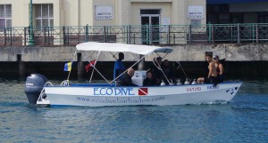 eco-dive-barbados-scuba-diving