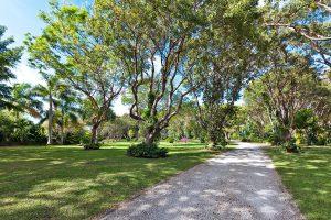 fustic-house-barbados-villa-rental-drive