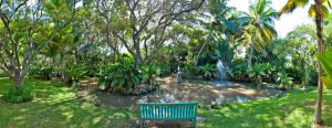 fustic-house-barbados-villa-rental-pond