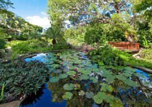 gardenia-barbados-villa-garden