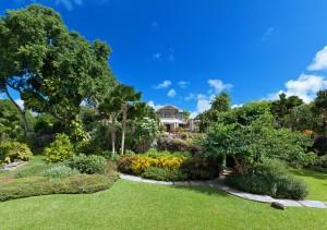 Lush tropical gardens at Gardenia