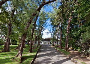 high-trees-villa-rental-barbados-driveway