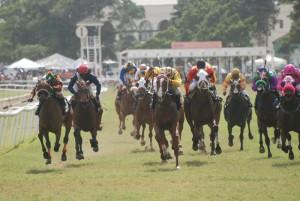 Horse Racing in Barbados