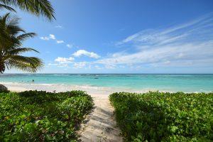 indramar-nautilus-vacation-rental-barbados-path