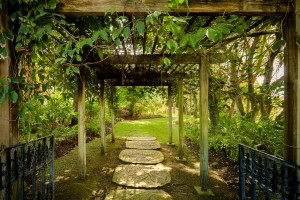 Pathway to the beautiful gardens and grounds