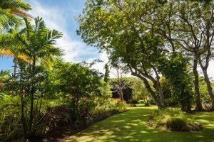 mullins-mill-villa-rental-barbados-gardens