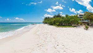palm-beach-101-barbados-beach
