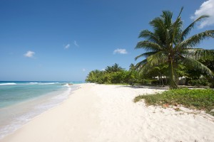 Palm-Beach-110-Barbados-holiday-rental-beach