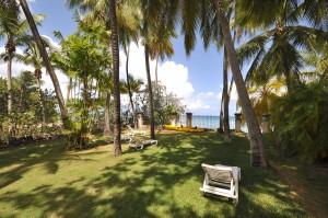 Tamarind Cottage landscaping