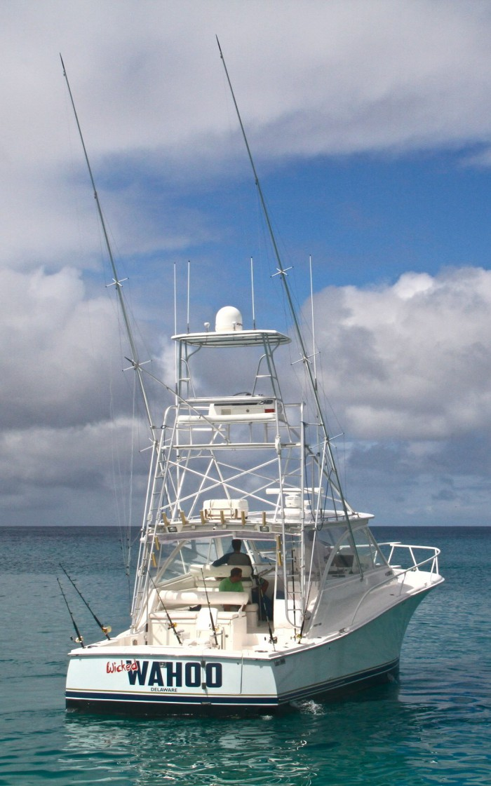 Speartime Luxury Fishing Charters