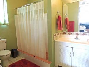 Ocean Hollow Barbados rental master bathroom