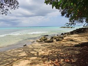 Ocean Hollow Barbados beach north