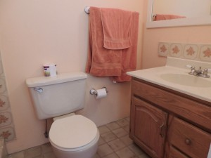Ocean Hollow Barbados rental bathroom 2