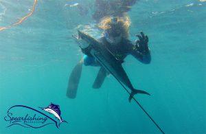 spearfishing-barbados