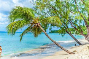 porters-court-3-barbados-beach