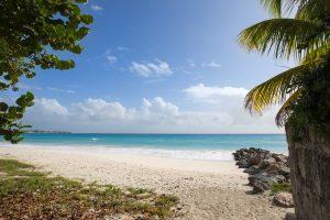 sandy-hook-21-barbados-beach