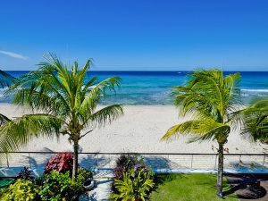 radwood-beach-house-barbados-view