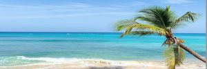 restrictions-removed-fully-vaccinated-barbados